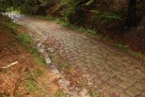 Benediktínská cesta v Broumovských stěnách nad Božanovem