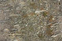 Dobruška - stará cesta ke kostelíku Svatého Ducha, detail štětování