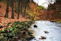 Peklo - pravý břeh Metuje se starou cestou a kamennou říční navigací