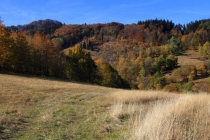 Góry Suche - pod Rogowciem
