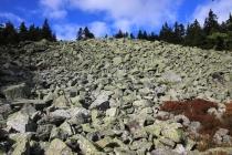 Kamenné moře pod Kralickým Sněžníkem