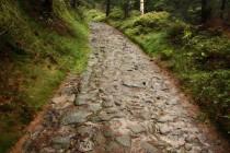 Benediktínské cesty v Broumovských stěnách, úsek nad Božanovem
