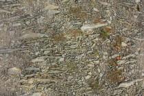 Stará cesta ke kostelíku Sv. Ducha u Dobrušky, detail štětovaní