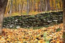 Peklo - zbytek staré lesní cesty poblíž Bartoňovy útulny, 26.10.2012