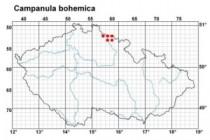 Zvonek český- Campanula bohemica, mapa rozšíření