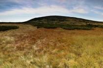 Úpské rašeliniště v Krkonoších svým charakterem připomíná krajinu dávných dob ledových a je stanovištěm několika glaciálních reliktů, které zde po oteplení na konci poslední doby ledové nalezly nové útočiště.