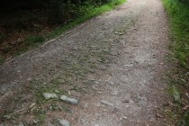 Štětovaná cesta u Zielence, Polsko