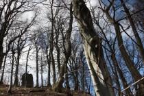 Zbytky věže hradu Homole