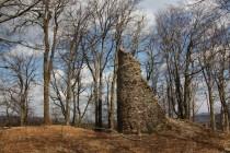 U Homole, zbytky přemyslovského hradu