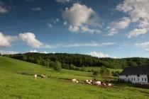 Část zdejších pozemků patří ke Kylarově statku, kde hospodaří Libor Netík - chová koně a kravy, má penzion a provozuje agroturistiku. Už taky dostal nabídky k odkoupení pozemků, ale neprodá. Zaplať Pánbůh ...