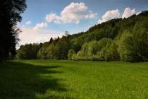 Zužujím se údolíčkem s plochou travnatou nivou protéká Halínský potok