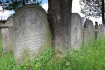 Protože Židé nemohou staré hroby přemisťovat ani rušit, a nemohou ani nijak manipulovat s jejich náhrobními kameny, bývají starší stély různě nakloněné a někdy i vrostlé do stromů.
