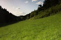 """Malebné údolí """"Nad závodištěm"""""""
