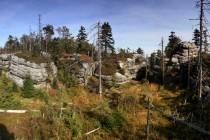 Na suchých skalách roste hlavně vřes a borovice, ve vlhčích roklinách převažuje borůvka a smrk.