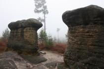 Skalní hřiby v Broumovských stěnách