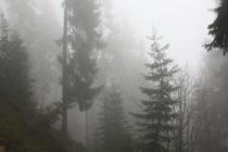 A tak se tam dá dojít jen pěšinou přes krásný horský les