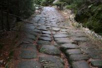 Na toulkách stěnami nelze minout krásné starobylé benediktínské cesty