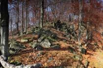 Bukové porosty na Kozích hřbetech