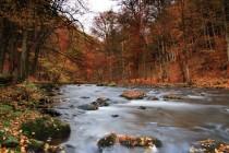 Peklo - to jsou hlavně krásné lesy a řeka Metuje