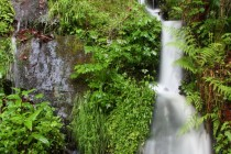 A na některých potocích jsou i menší vodopády