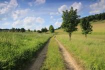 Cesta na horské louky