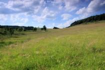 Krásná je zdejší podhorská krajina ...