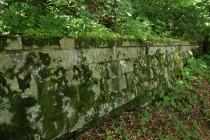 Na polské straně lze zaniklou trať v terénu snadno sledovat