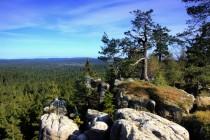 Biale Skaly - nejhezčí jsou temena skal s vřesem, borovicemi a dalekými výhledy