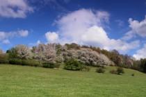 Na Prostřední hoře IMG_6193_panorama (2)