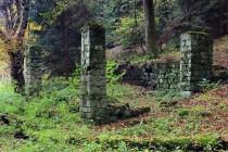 Karlówek dnes - ruiny uprostřed lesa...