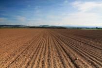 Některá místa jsou tu zemědělci kontinuálně obdělávána již 7000 let.! Pole u Nahořan - lokalita s polyhistorickým osídlením (neolit a doba bronzová).