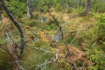 Vody přibývá a zanesené meliorační příkopy ji přestávají odvádět