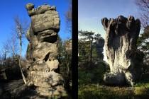 Přírodní sochy a zkamenělá zvířata