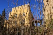 Budovy ztracené v neprostupných porostech škumpy