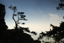 Na Krásné vyhlídce - stmívání a japonská vize české krajiny