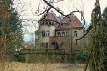Vila stojí uprostřed praku s mnoha vzácnými dřevinami