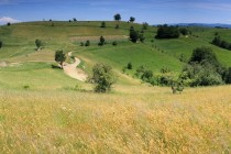 Cestou na Rovensko