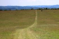 Cesta z Gerniku na svatou Helenu