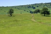 Krajina u Svaté Heleny