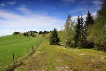 Středem hřbetu prochází hranice. Tvoří ostrý předěl mezi sečenou horskou loukou a opuštěnými pastvinami, které zarůstají nálety...