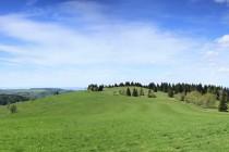 Na Panském vrchu u Olešnice