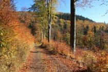 Góry Suche (Javoří hory) - cestou na Rogowiec