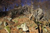 Góry Suche (Javoří hory) - na Rogowci