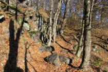 Stezka na hrad Rogowiec
