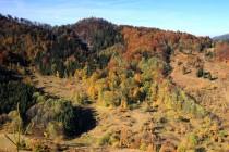 Zarůstající pastviny pod Rogowcem