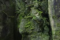 Teplické skály - Sibiř