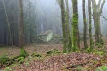 Záboř dnes - místo zemědělské osady les a trampský srub