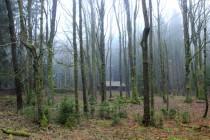 Záboř dnes - místo zemědělské osady ruiny, les a trampský srub