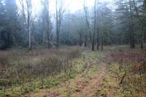 Záboř - místo zaniklé osady