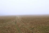 Pastviny na Záboři. Bloudění v mlze.